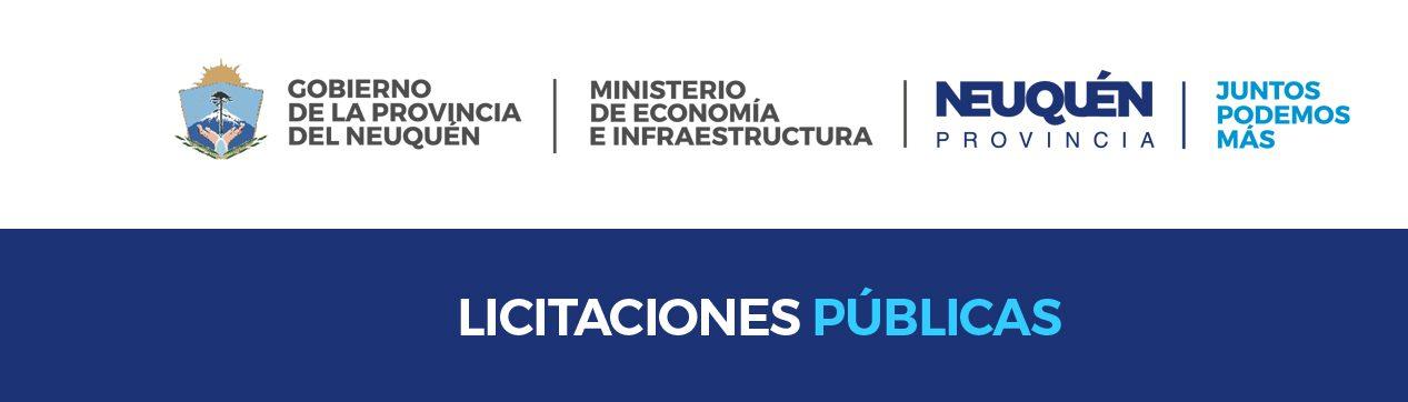 Licitaciones Pública